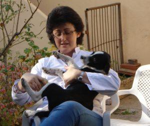 Atención veterinaria a domicilio